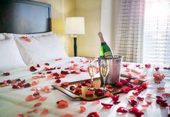 Champagne , petals -hot04