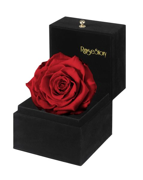 Rosestory 174 Forever Love Exquisite Single Red Rose Gift