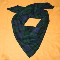 Bandana Green/Navy Plaid