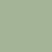 Sage Pigment