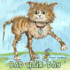 Bad Hair Day Cat Magnet