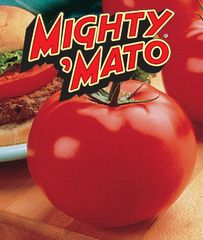 Grafted Big Beef Mighty 'Mato