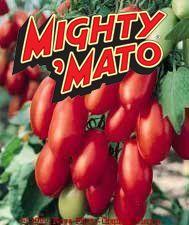 Grafted San Marzano Mighty Mato