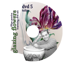 sku#7104 Tulips #5 - DVD - Flower