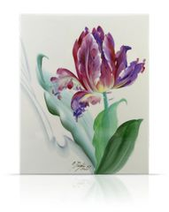 sku#6104 Tulips , flower study #5