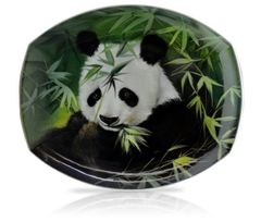 sku#6004 Panda Study #5