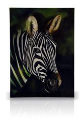 sku#7000 Zebra - DVD #1