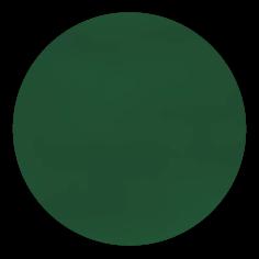 sku#2704 Darkest Green , paint - 6 grams