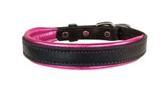 BLACK Padded Leather Dog Collar in FIVE METALLIC Padding Colors