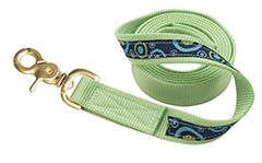 Fancy Nylon Ribbon Dog Leash in TEN Ribbon Colors and Two Sizes