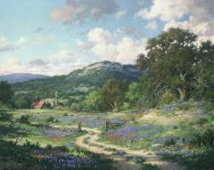 Hill Country Evening by Larry Dyke