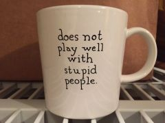 Does Not Play Well With Stupid People Coffee Mug (Printed Version)