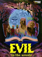 Evil In The Woods DVD
