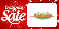 Christmas Sale Employee Name Tags (40 pack)