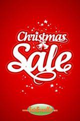 Christmas Sale Glossy Poster