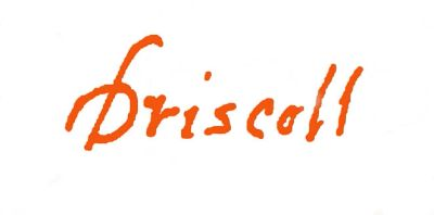 DRISCOLL FINE ART