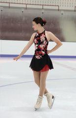 Jerry's Chelsea Rose Figure Skating Dress