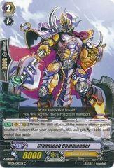BT06/080EN (C) Gigantech Commander