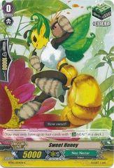 BT05/054EN (C) Sweet Honey