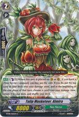 BT08/062EN (C) Tulip Musketeer, Almira