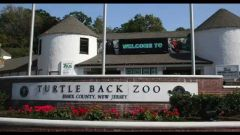 Turtle Back Zoo - Wed, October 10, 2018