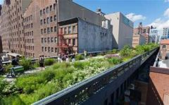 Tues, June 25, 2019 - Highline & Chelsea Market