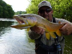 TN TAILWATERS GUIDED FLY FISHING TRIP