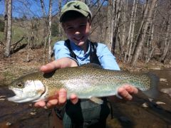 HALF DAY GUIDED FLY FISHING WADE TRIP - NC/VA WATERS