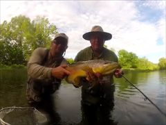 TN Tailwaters/South Holston Trip June , 2017