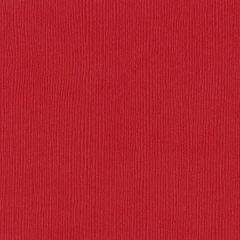 Bazzill Cardstock 12x12 - Fourz - Berrylicioius