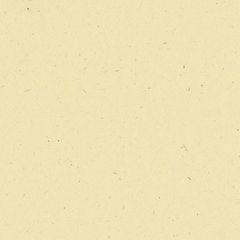 Bazzill Cardstock 12x12 - Classic - Sawdust