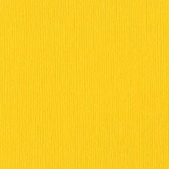 Bazzill Cardstock 12x12 - Fourz - Mexican Poppy