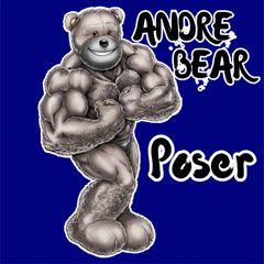 Andre Bear Poser