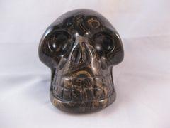 Strombolite Skull