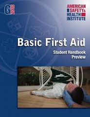 Adult First Aid Conducted On-Site - See Various Delivery Options in Product Description