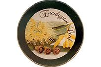 CLEARANCE - Eucalyptus Leaf Scented Soy Wax - Large