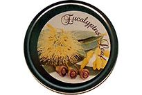 CLEARANCE - Eucalyptus Leaf Scented Soy Wax - Small