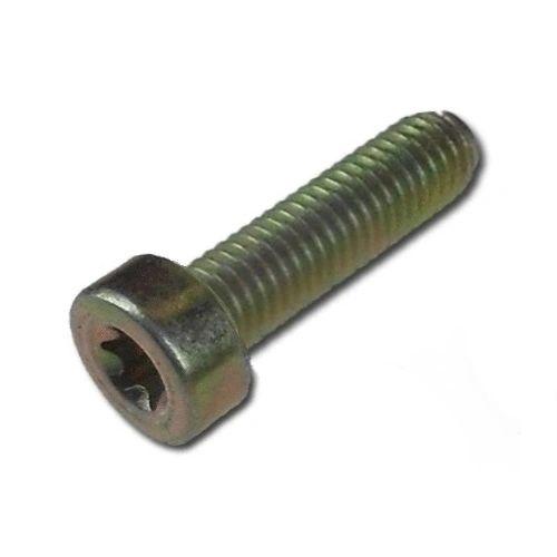 SPLINE SCREW T27-M6 X 20