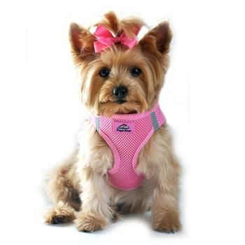 American River Ultra Choke Free Dog Harness - Candy Pink