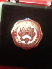 ACH LAPEL PIN (ON BACKORDER)