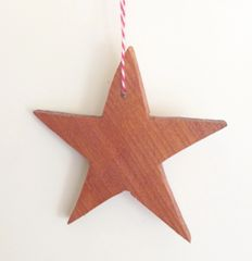 Star Holiday Ornament
